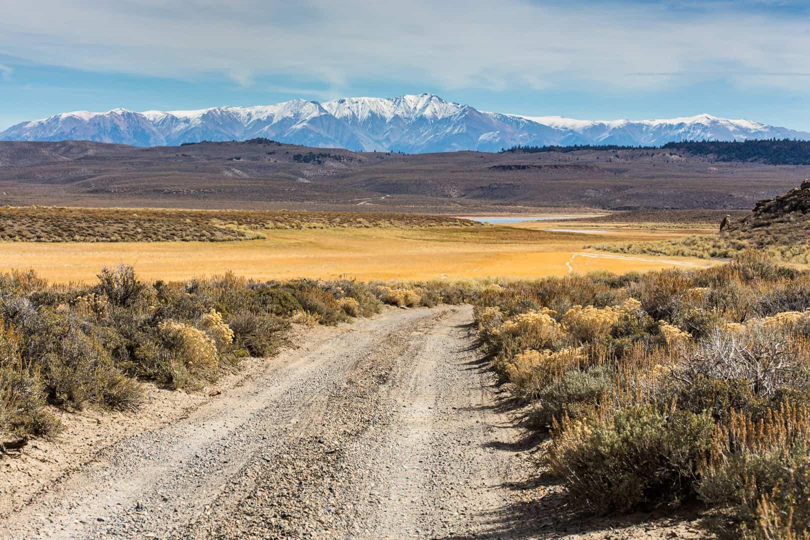 Road, Long Valley, October 2015