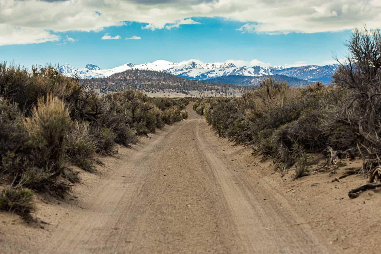 Dirt Road, Long Valley, May 2016