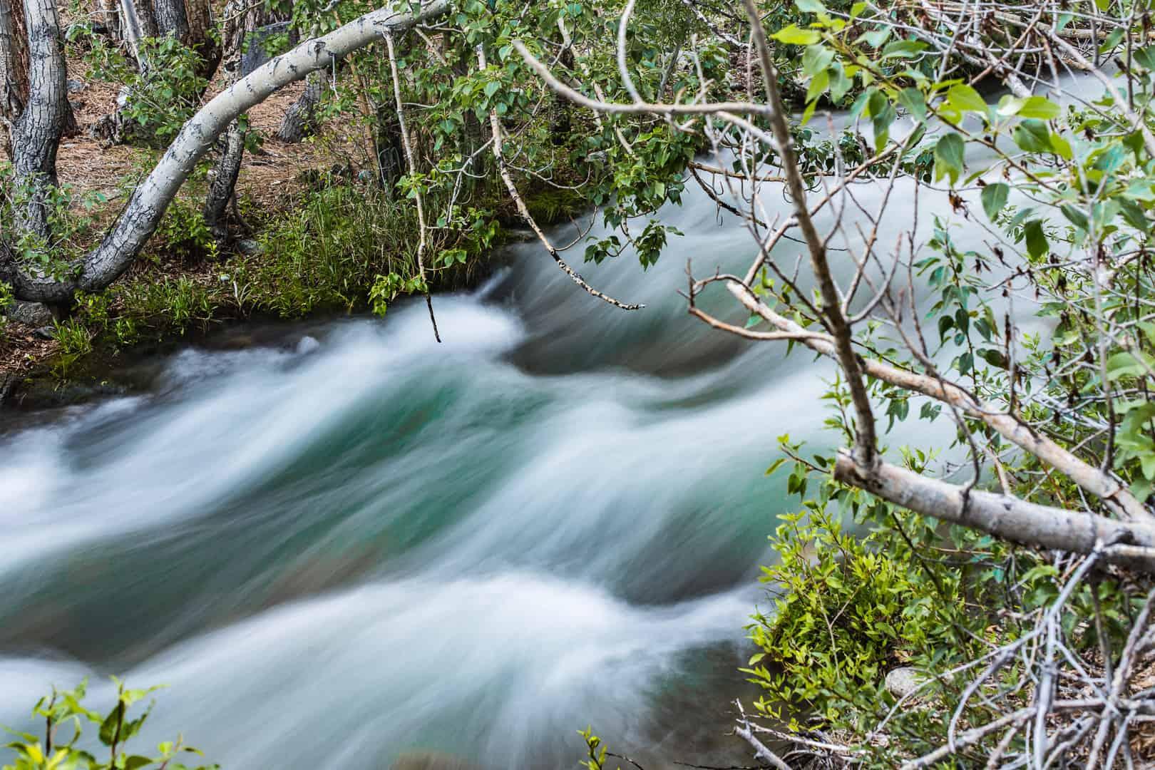 Runoff, Big Pine Creek, June 2016